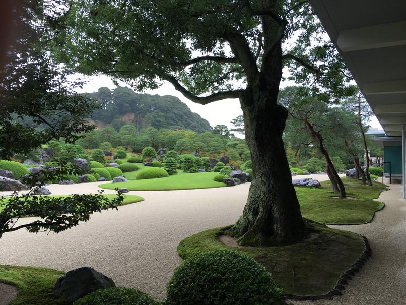 足立美術館の日本庭園6