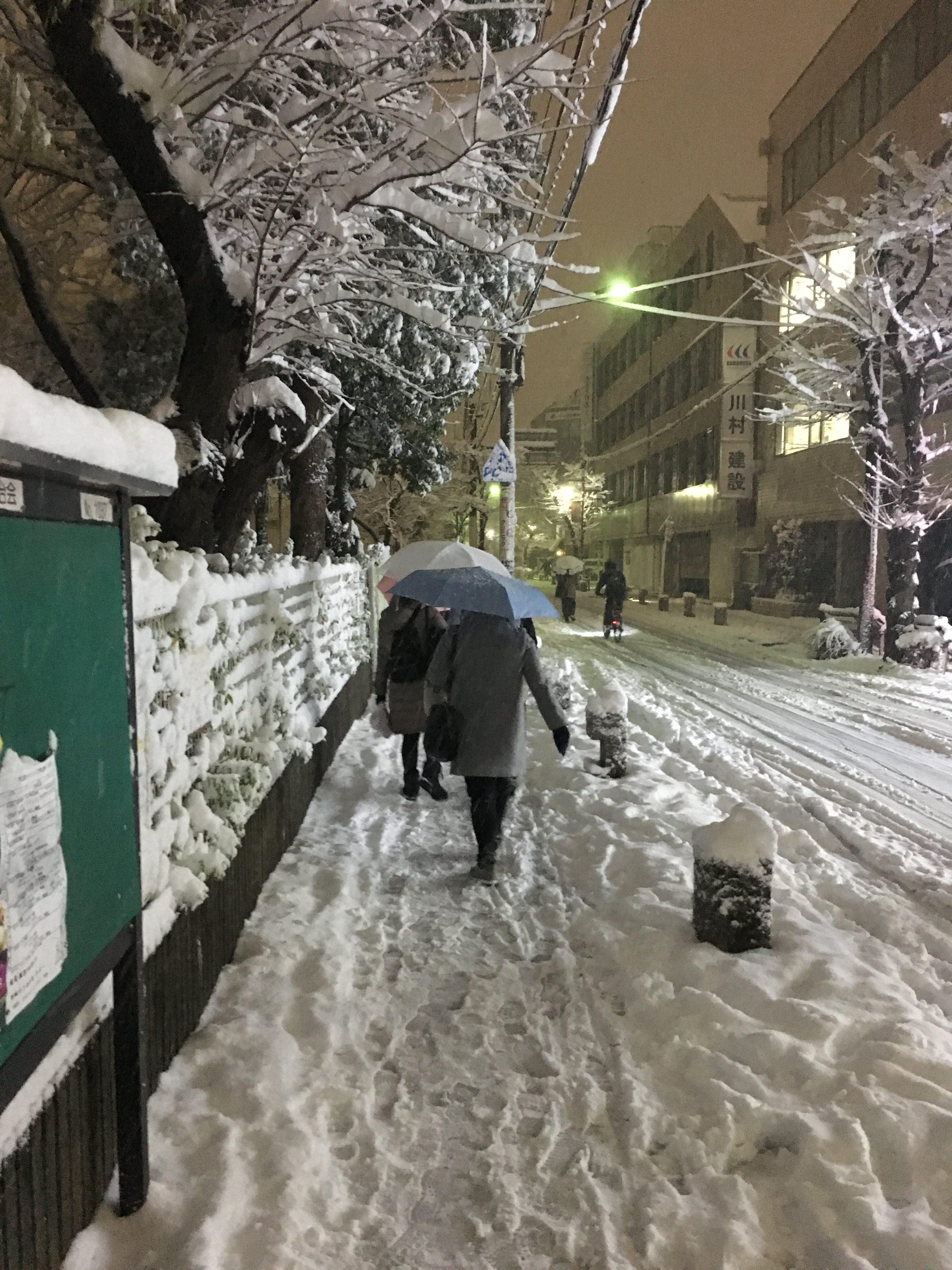 雪がやばい!!